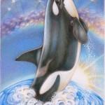 Star Whale