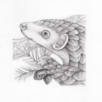 Pangolin Portrait (2018)