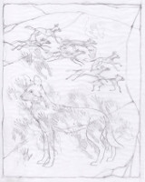 Cave Painting<br/>Pencil Rough