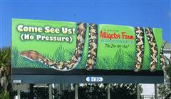 Alligator Farm Billboard