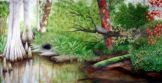 Florida Swamp (right panel)